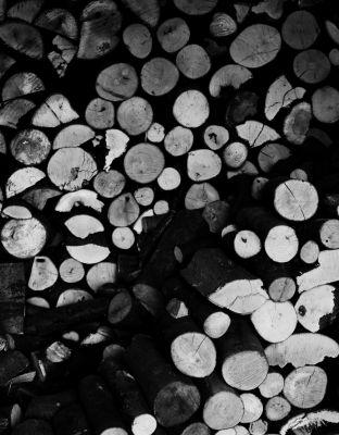 Lirikonfestova galerija / Ksenija Mikor / 21 pogledov na lirični avanturizem (7)